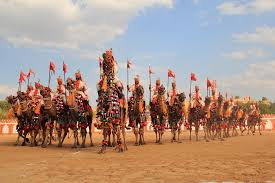Camel Festival in Bikaner with credence travel